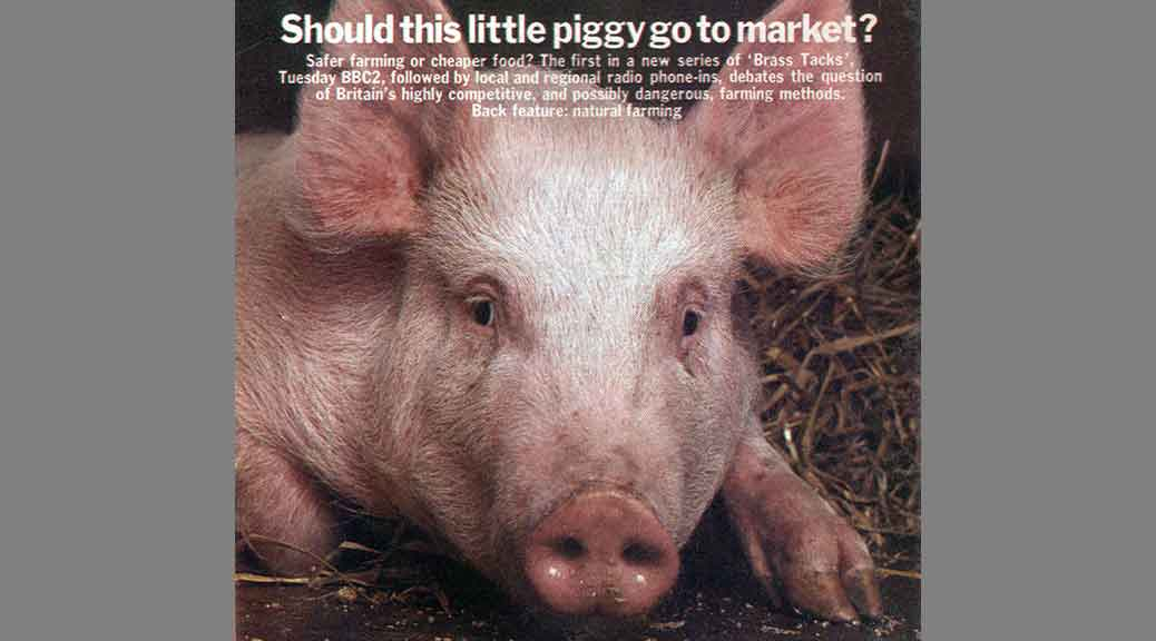 Sick Pig, Radio Times
